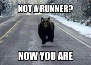 funny_bear_not_a_runner_now_you_are-1561